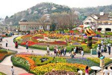 Chi phí 1 Tour du lịch Hàn Quốc bao nhiêu tiền?