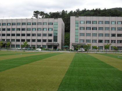 đại học kaya