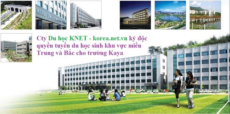 Hình ảnh trường đại học KAYA