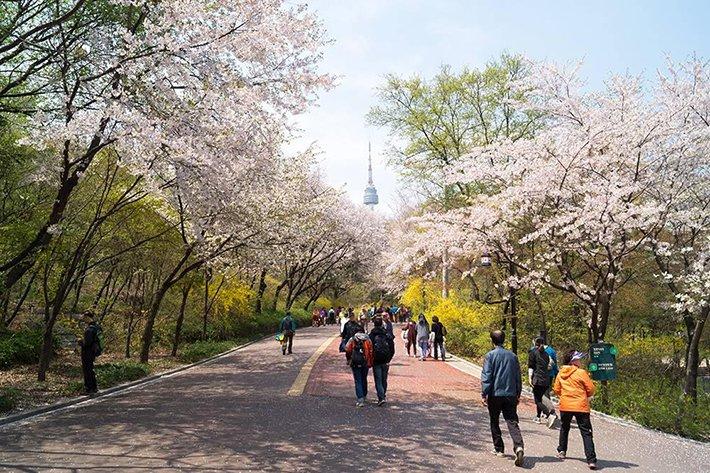 trong trường đại học Kyunghee