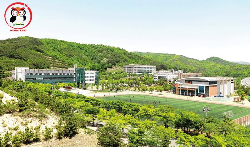 Sân bóng trường đại học Uiduk rất rộng rãi