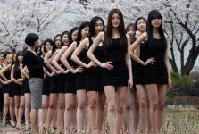 du học Hàn Quốc làm người mẫu