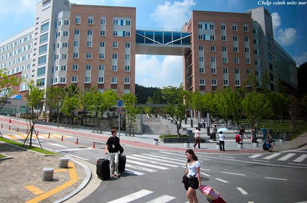 Học viện kỹ thuật Dongyang