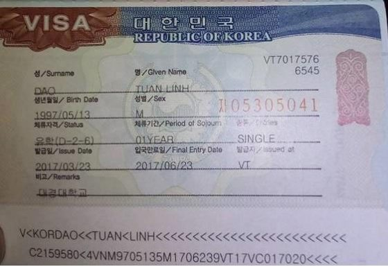visa-d2-6