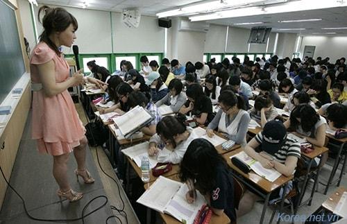 Trẻ em lớp 1 và 2 sẽ không được học tiếng anh