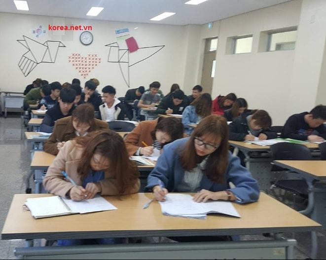 Các bạn du học sinh Việt Nam học tiếng Hàn ở trường cao đẳng Gimhae