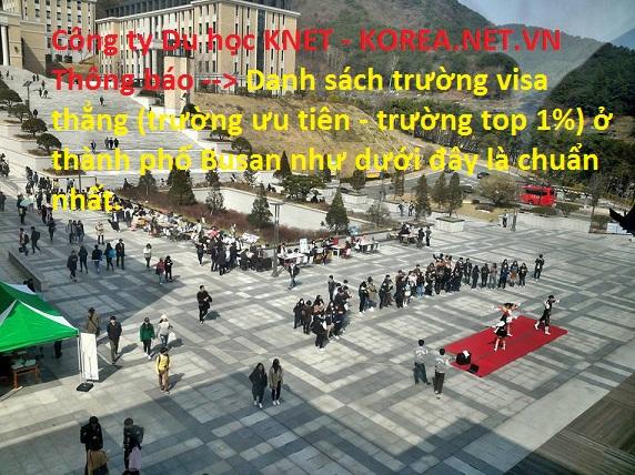 trường đại học visa thẳng ở Busan