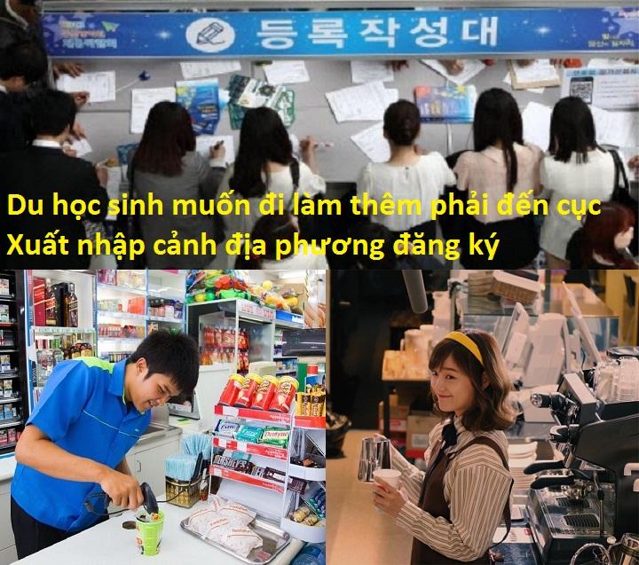 Sinh năm 2000 đi Du học Hàn Quốc sang bao lâu đi làm là tốt nhất