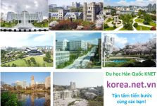 TOP 8 trường đại học đẹp nhất Hàn Quốc