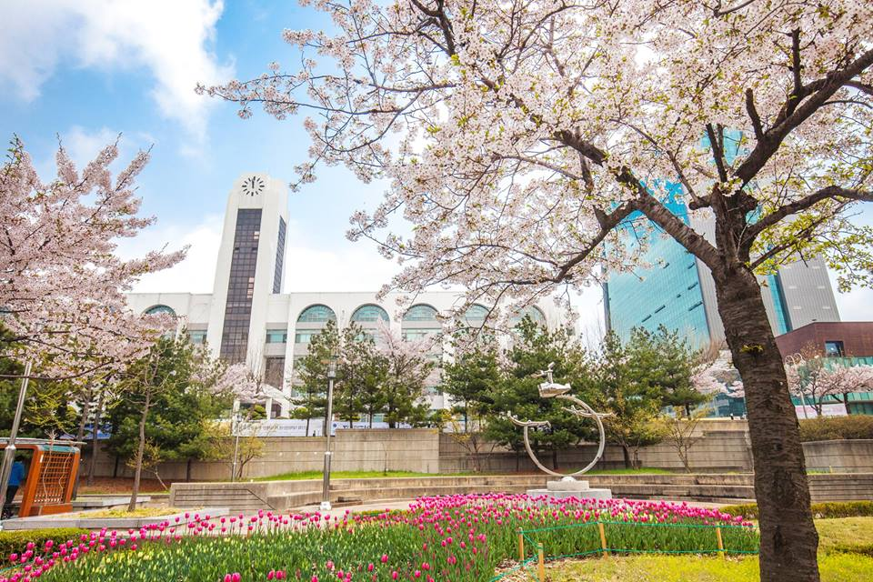 Cảnh đẹp mùa xuân trong khuôn viên trường đại học Inha