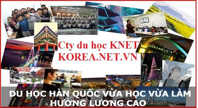 du học nghề tại Hàn Quốc để được hưởng lương