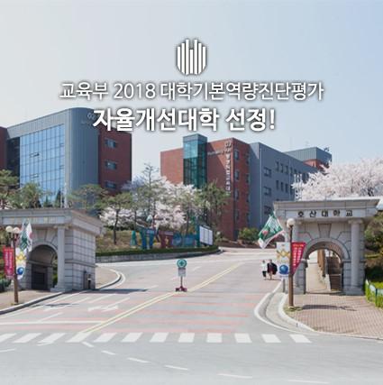 Hosan University