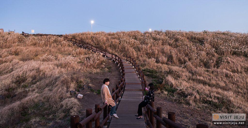 Dakmeoreu Địa chỉ: 2408-1, Sinchon-ri, Jocheon-eup, Jeju-si, Jeju-do