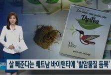 Bản tin đưa thông tin về trà giảm cân VY&TEA trên kênh truyền hình Hàn Quốc SBS