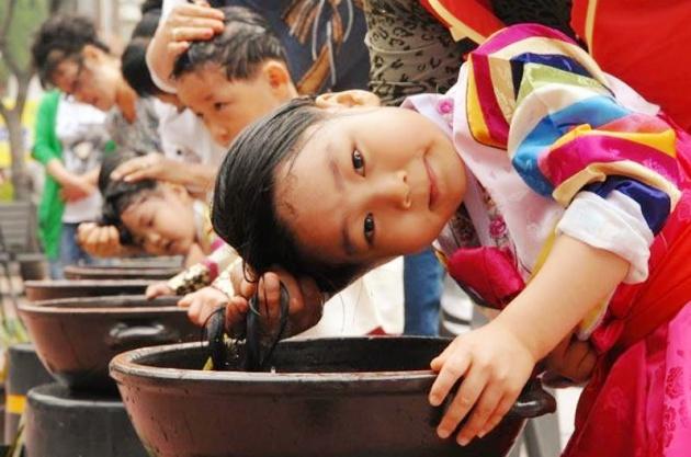 Các thiếu nữ Hàn sẽ gội đầu với thứ nước đun với lá cây diên vĩ