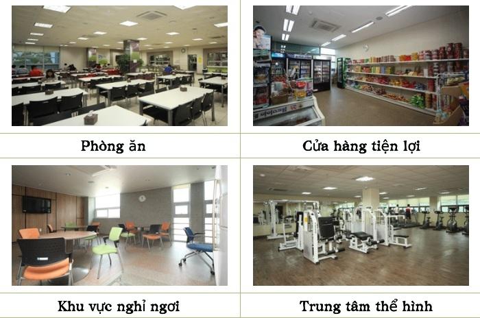 Hình ảnh về khu nội trú của trường Đại học Tongmyong (1)