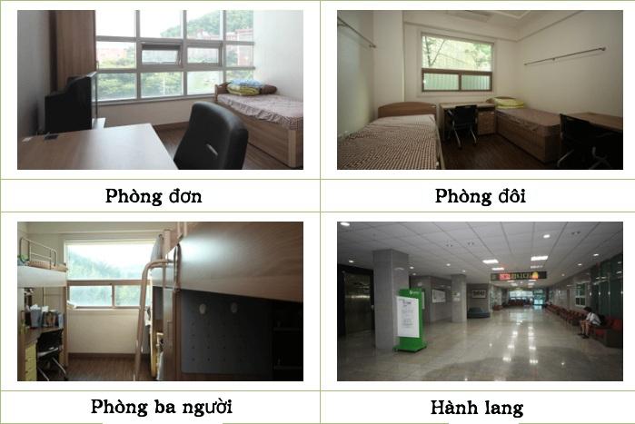 Hình ảnh về khu nội trú của trường Đại học Tongmyong (4)Hình ảnh về khu nội trú của trường Đại học Tongmyong (4)