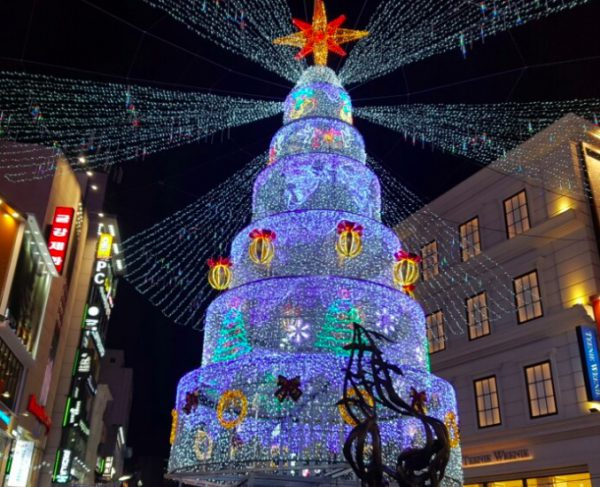 Cây thông Noel mang nhiều sắc thái khiến cho ngày hội càng náo nhiệt