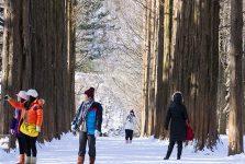 Du học Hàn Quốc kỳ mùa đông (dịp tết) - tháng 12