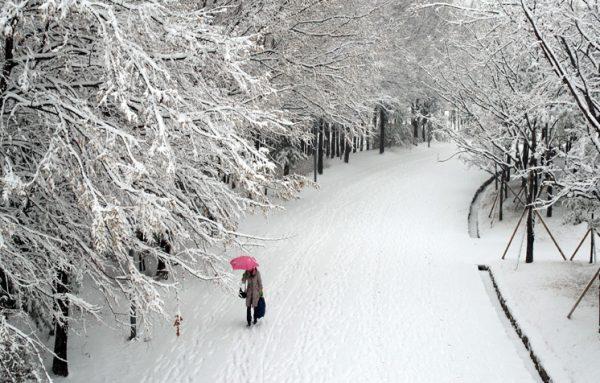 Mùa đông tại Hàn Quốc rất lạnh và con đường được phủ đầy tuyết trắng