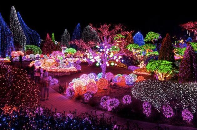 Garden of Morning Calm là một địa điểm nên đến nhân dịp Giáng sinh ở Hàn Quốc