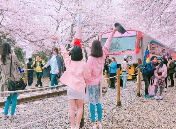 Bạn tha hồ check in và ngắm nhiều cảnh đẹp khi đến Hàn Quốc trong dịp tết âm lịch