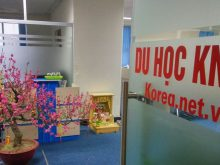 Du học Hàn Quốc tại Ứng Hòa nên tìm đến công ty du học Knet
