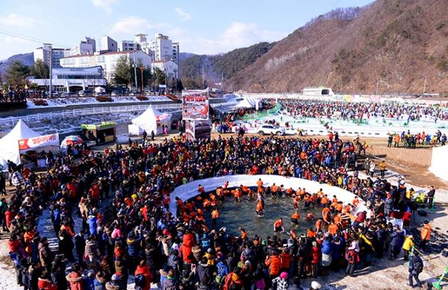 Bắt cá tay trần trong Lễ hội Câu Cá trên Băng Hwacheon Sancheoneo