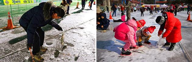Câu cá trên băng là hoạt động chính của lễ hội Hwacheon Sancheoneo