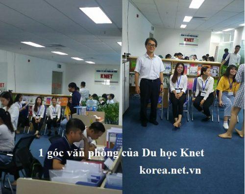 du học Knet