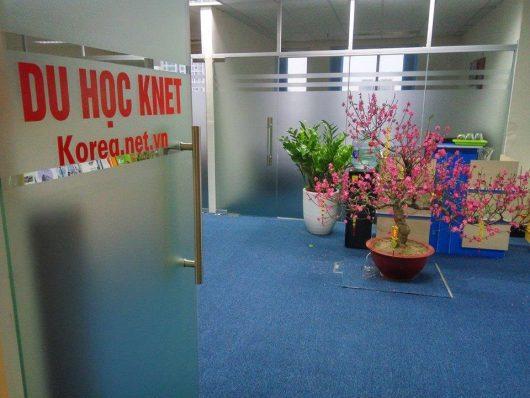 Công ty tư vấn du học Knet luôn chào đón các bạn