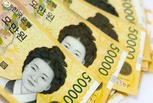 Shin Saimdang là người phụ nữ đầu tiên được Hàn Quốc lựa chọn in trên tiền Hàn Quốc