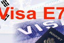 Visa E7 Hàn Quốc