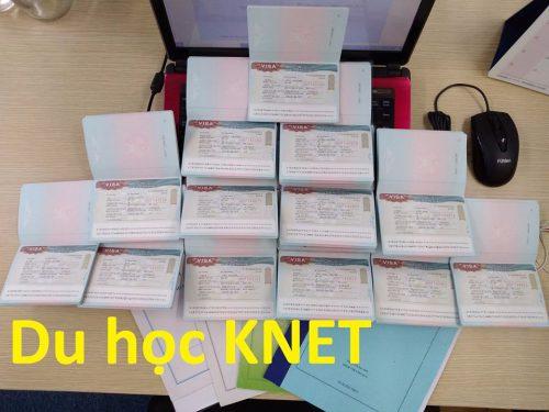 Công ty Knet có liên kết nhiều trường ra mã code nên visa du học về liên tục tại công ty