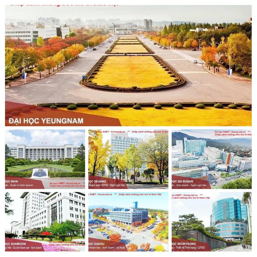 Một số trường Được chứng nhận ở Hàn Quốc