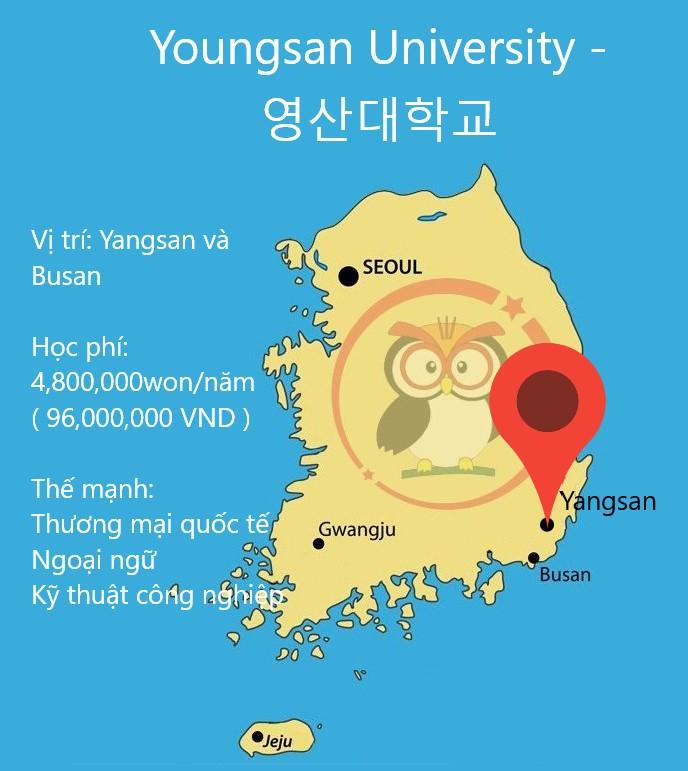 bản đồ đại học Youngsan: học vị trí, học phí, thế mạnh