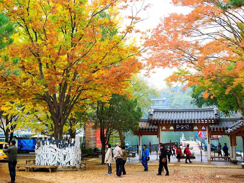 Khám phá cảnh đẹp bốn mùa đảo Nami Hàn Quốc - nét quyến rũ đâu chỉ có trên phim ảnh!