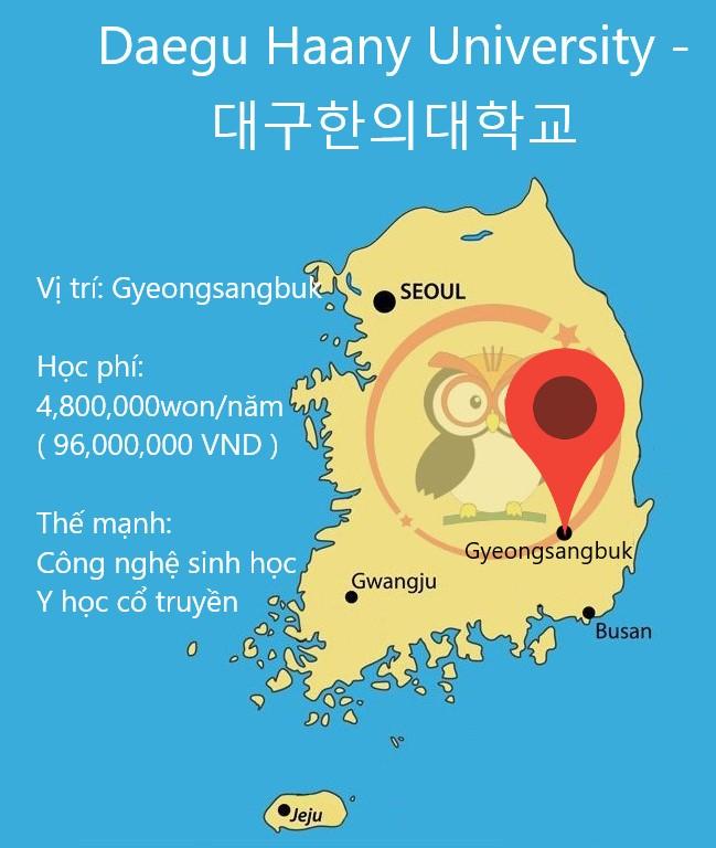 Bản đồ đại học Daegu Haany: học phí, thế mạnh