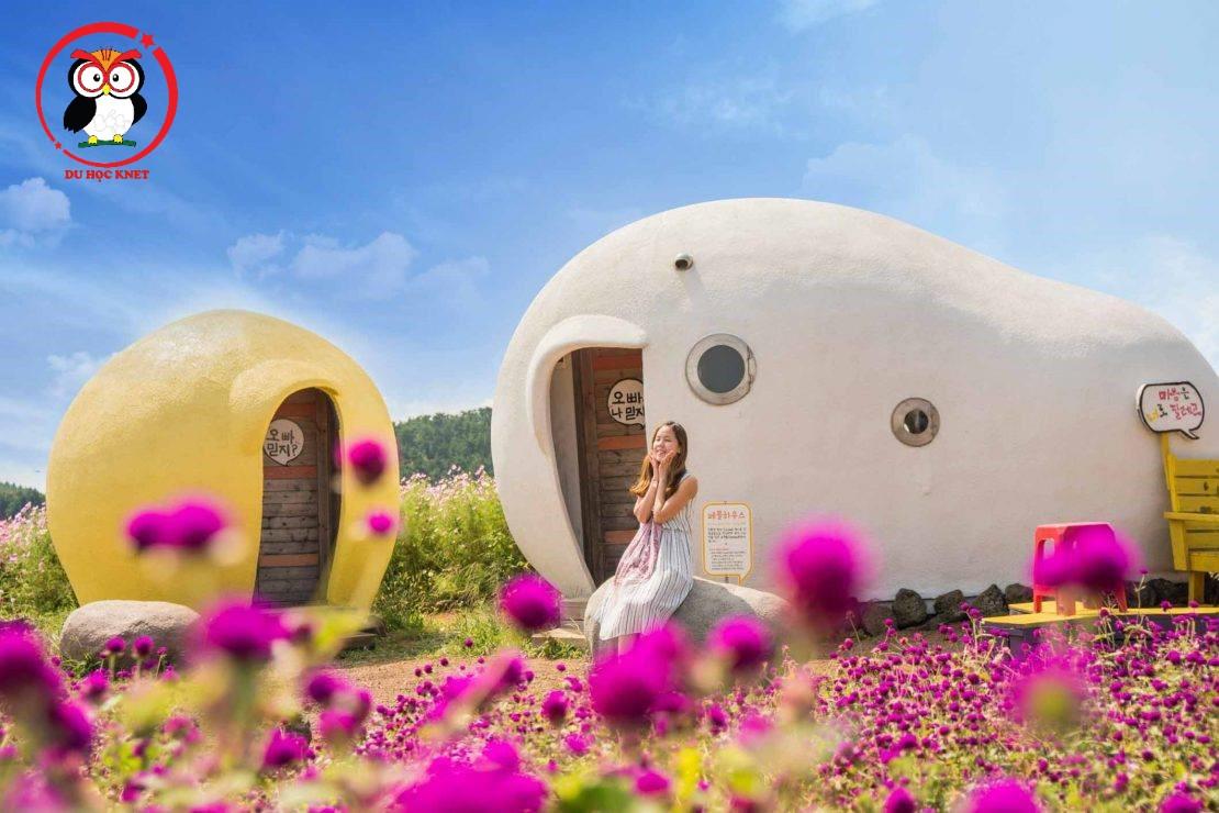 1 góc rất Chill trên đảo Jeju