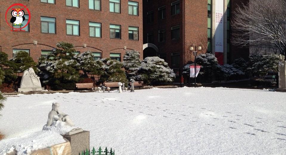 Mùa đông ở Kyungin Women's University